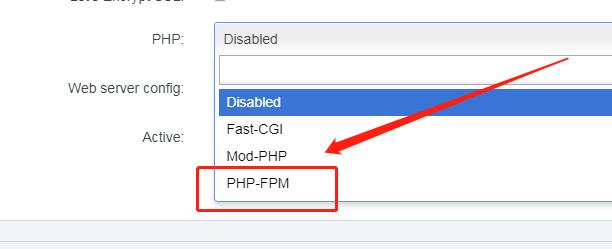 新建网站时选择PHP类型