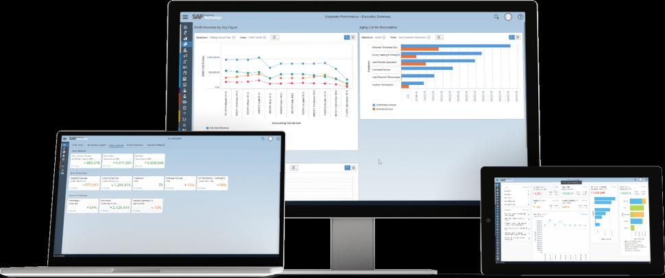 SAP Business ByDesign 模块:财务